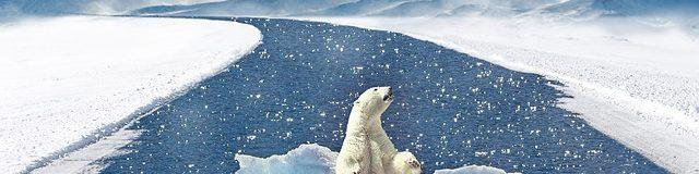 Milieu, klimaat, duurzaam leven en bouwen